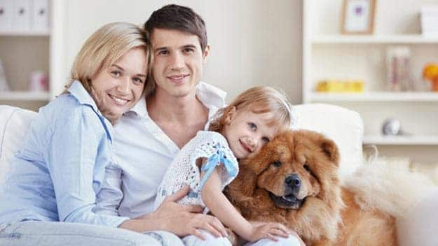 Wills & Trusts dog-young-family Direct Wills Nottinghamshire